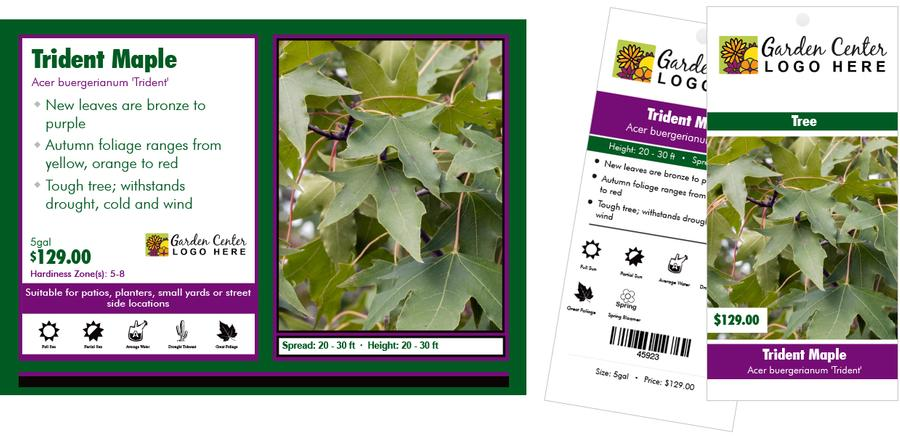 photo regarding Printable Plant Labels identify Generate your particular printable plant hold tags