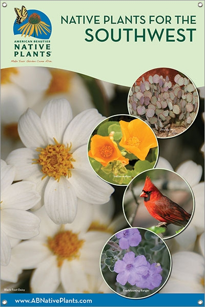 Native Plants For The Southwest 24 X36 Single Sided Vinyl Banner