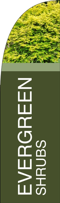 Evergreen Shrubs Feather Flag Single Sided-Bold