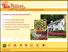 SunPatiens GENERAL Bench cards
