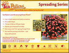 SunPatiens SPREADING Bench cards