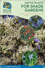 Native Plants for Shade Gardens-NEW ENGLAND 24