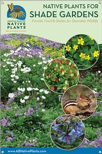 Native Plants for Shade Gardens-MIDWEST/E. GREAT PLAINS 24