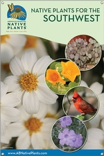 Native Plants for the Southwest 24