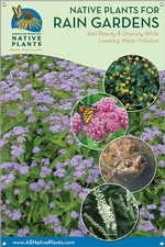 Native Plants for Rain Gardens- MID-ATLANTIC 24