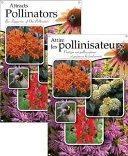 Attracts Pollinators/Attire les pollinisateurs 24