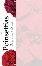 Poinsettias 48
