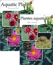 Aquatic Plants/Plantes aquatiques 24
