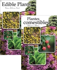Edible Plants/Plantes comestibles 24