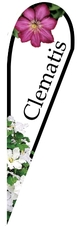 Clematis Teardrop Flying Banner Double Sided with Ground Stake